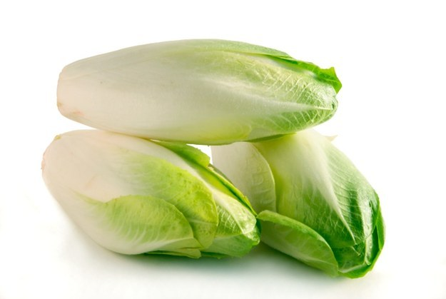organic-green-belgian-endive